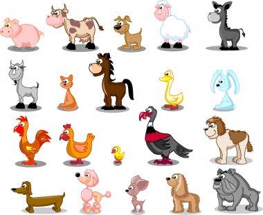 Cartoon set pets