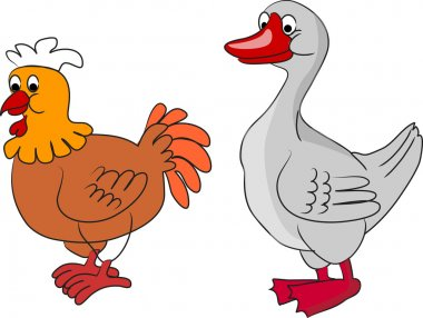 Chicken and Duck, living on a farm
