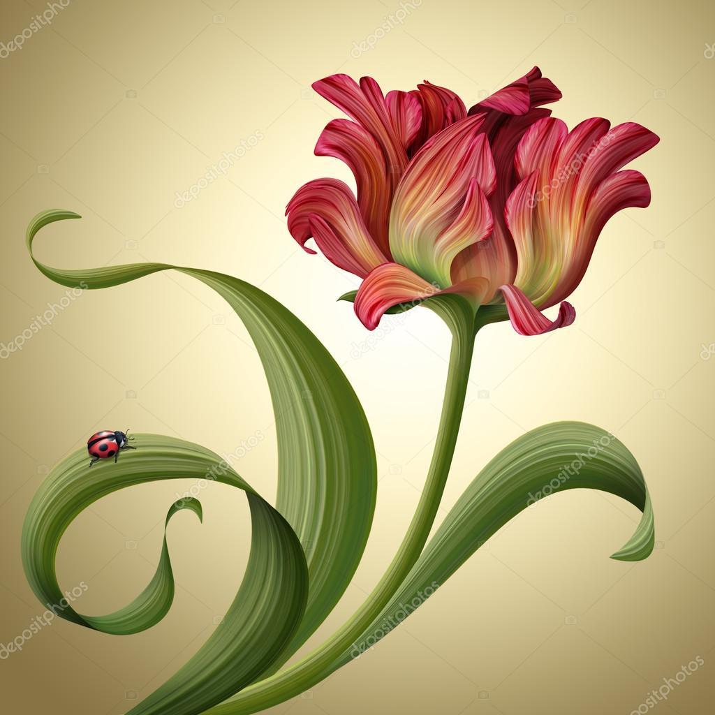 Fleur De Tulipe Rouge Avec Coccinelle Assis Sur Une Feuille Frisee