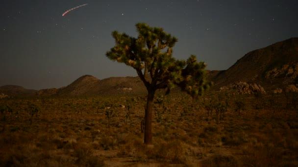 časová prodleva joshua tree a letadel a hvězd v pustém nebi