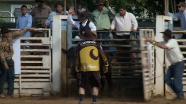 Rodeo Cowboys - Bull Riding in Slow Motion