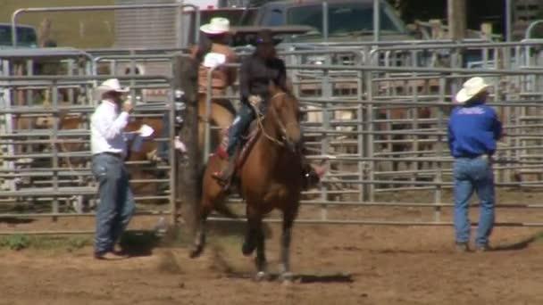 Rodeo kovbojů - cval koně Zpomalený pohyb