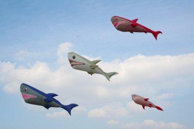 Shark kites, happy composition
