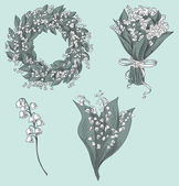 gyöngyvirág rajzok gyűjteménye. kézzel rajzolt vektoros illusztráció