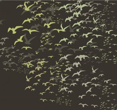 Birds silhouette sets vector art