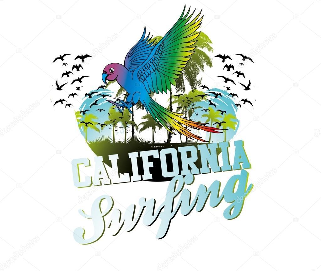Summer birds parrot surf beach vector art