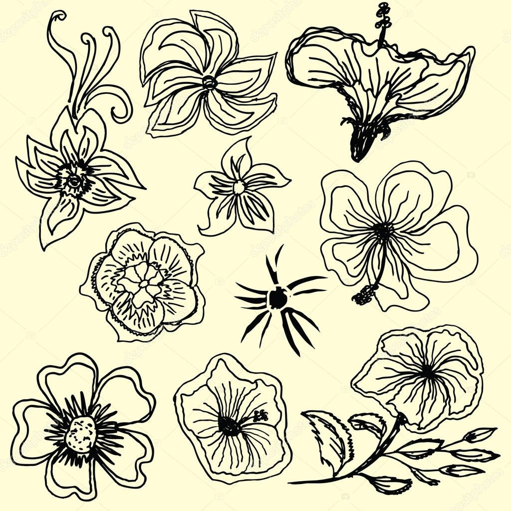 Hibiscus flower silhouettes vector art