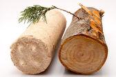 Fotografie Stück Brennholz und Holz Brikett vor einem weißen Hintergrund