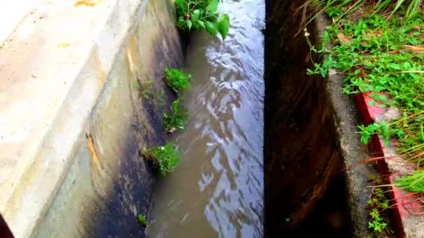 timelaps hladina vody v mozků kdy déšť
