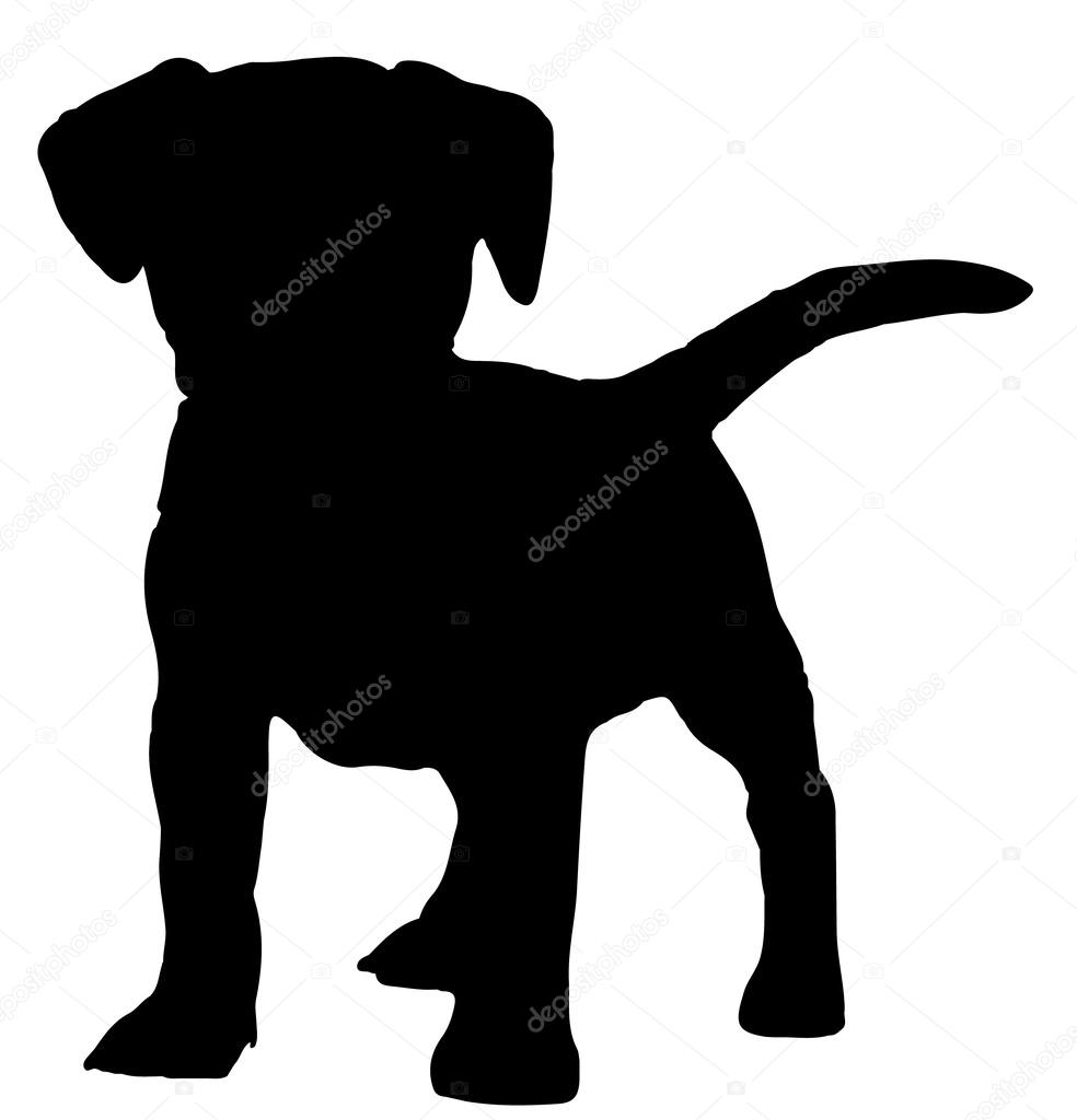 dog silhouette stock vectors royalty free dog silhouette
