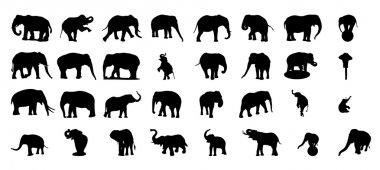 Elephant silhouette vector set