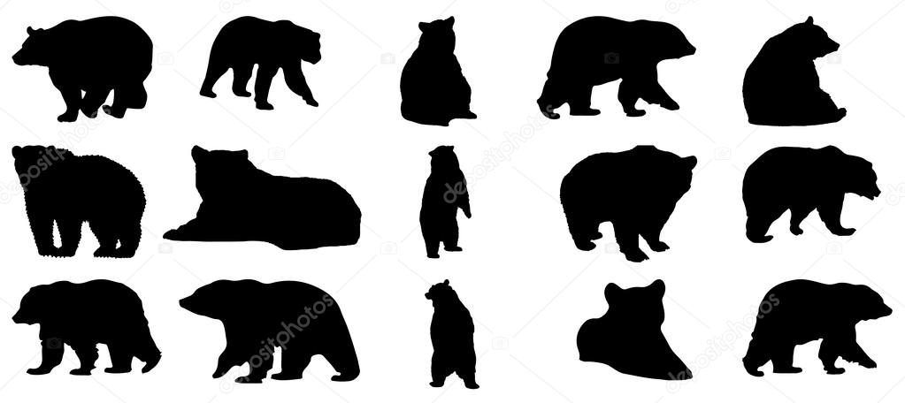 Silhouette bear collection
