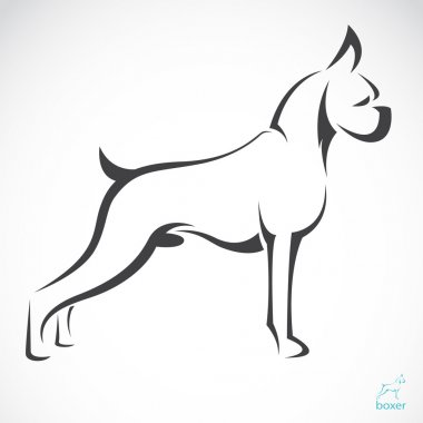 Vector image of an dog(boxer)