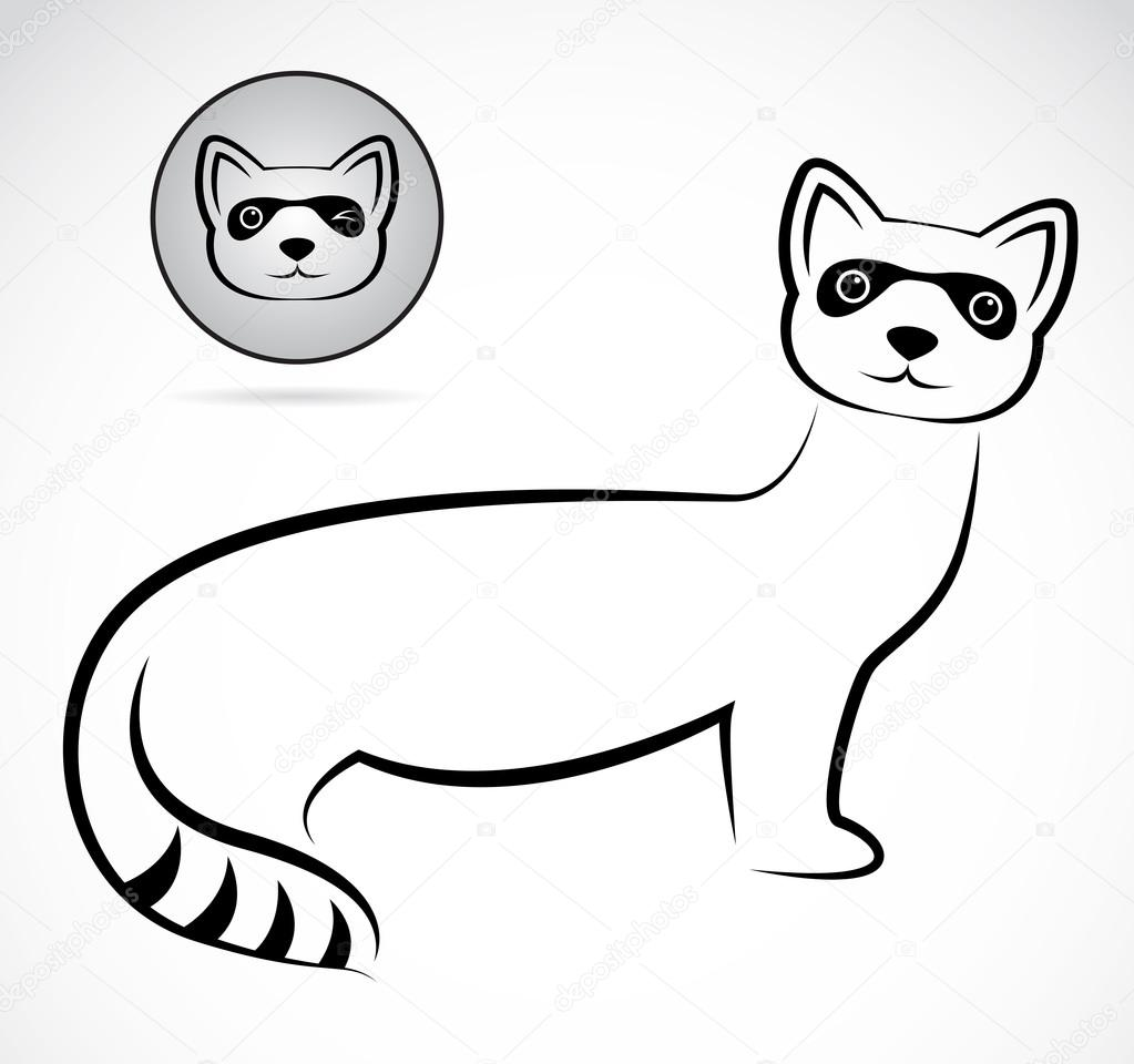 Vector image of an raccoons