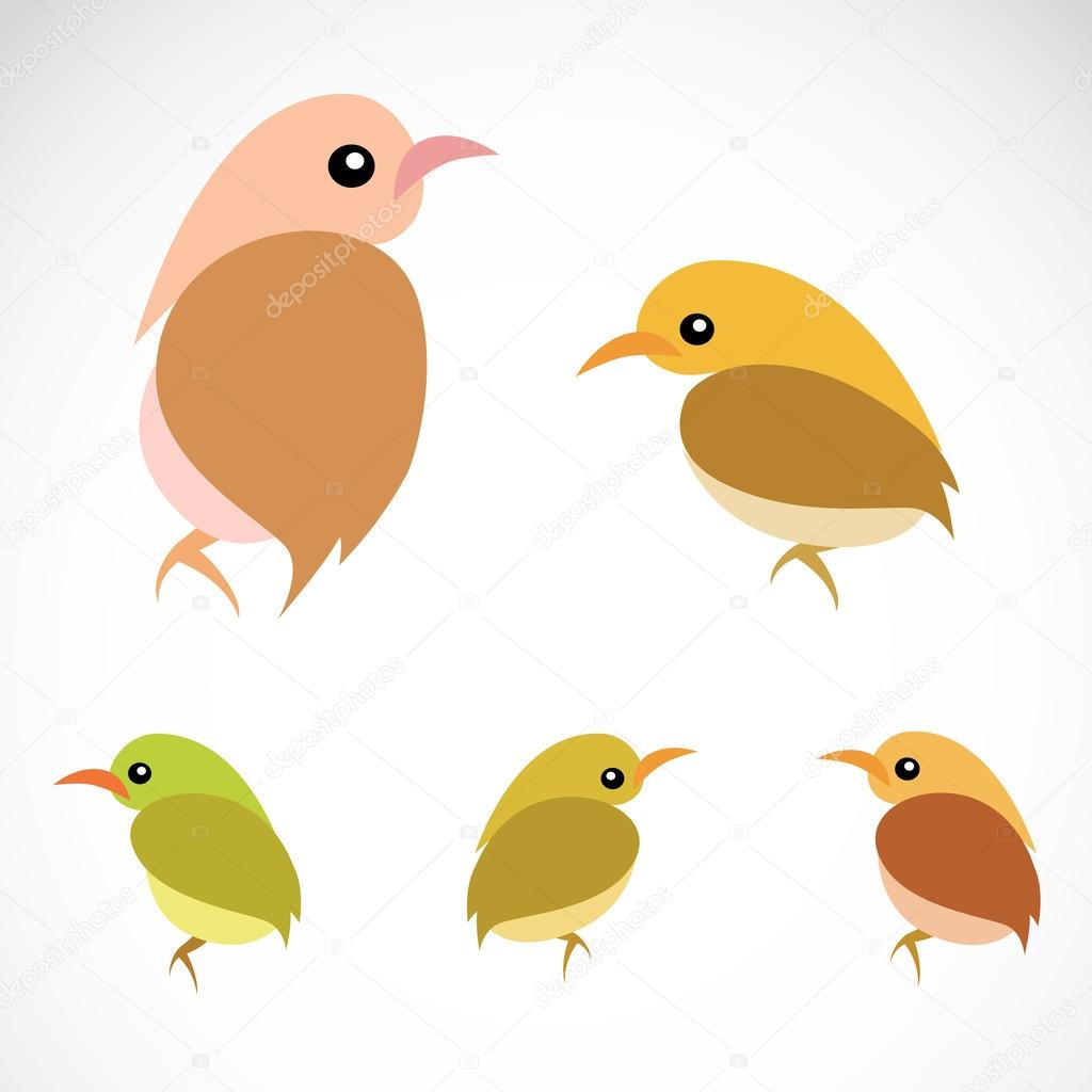 Vector image of an sparrow