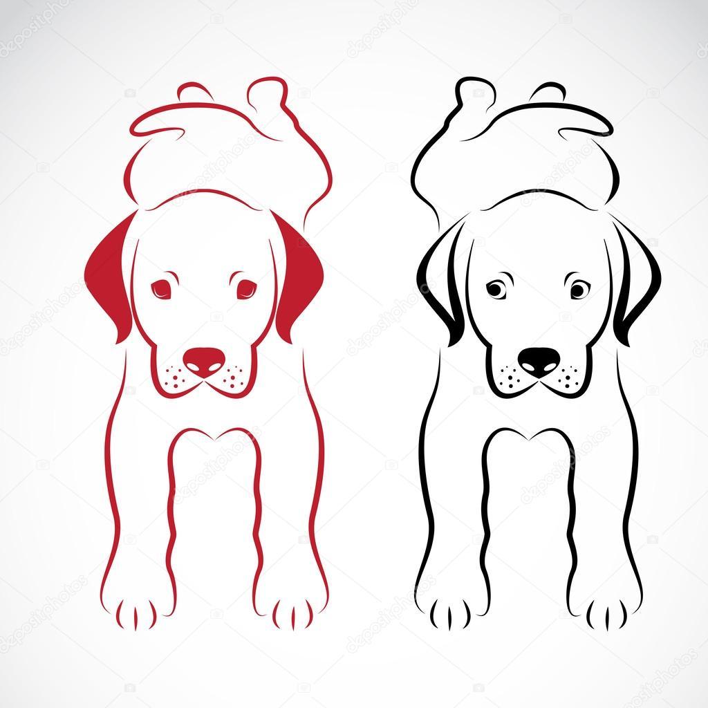 Vector image of an dog labrador
