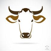 vektorový obrázek krávy hlavy
