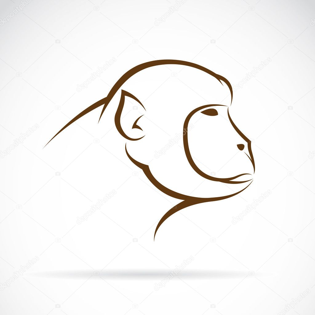 Vector image of an monkey face