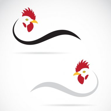 Vector image of an cock on white background stock vector