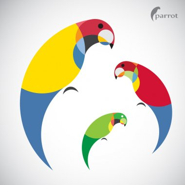 Vector image of an parrot design