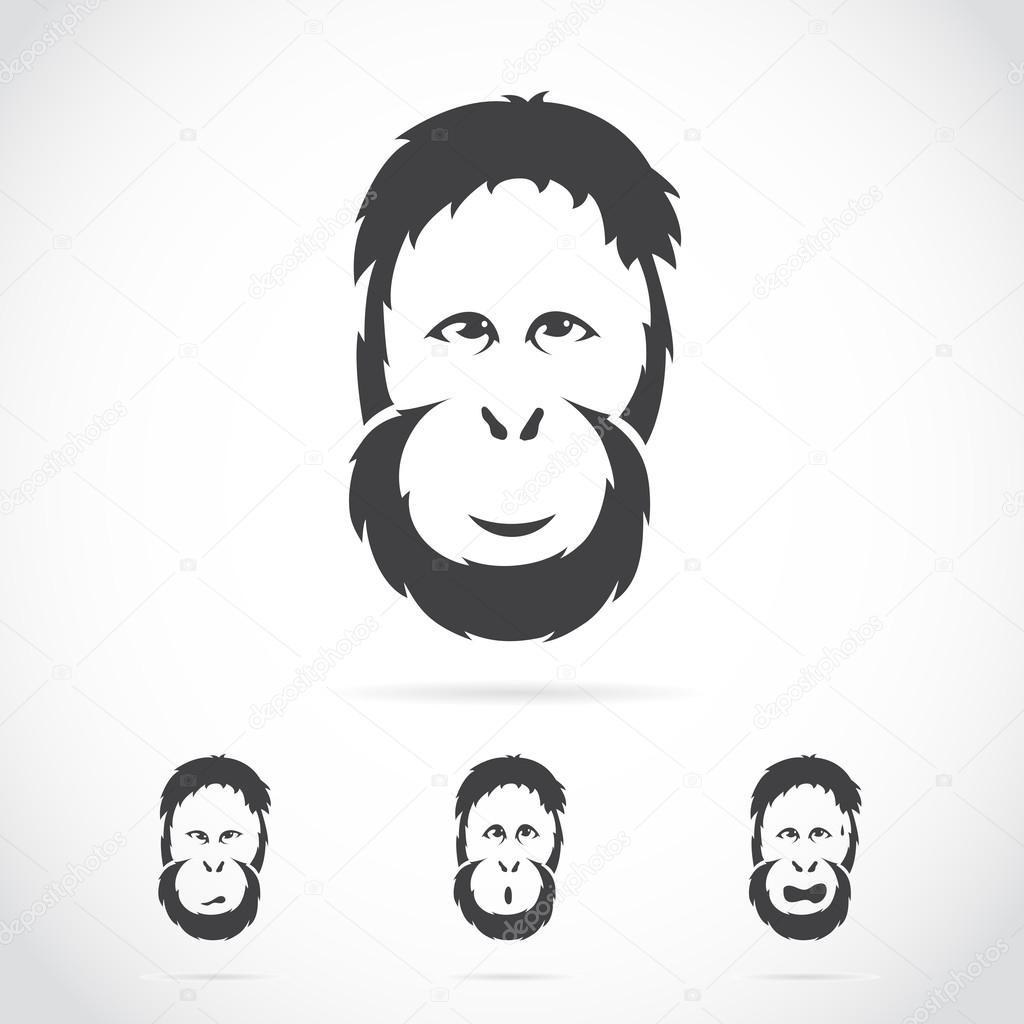 Vector image of orangutan face