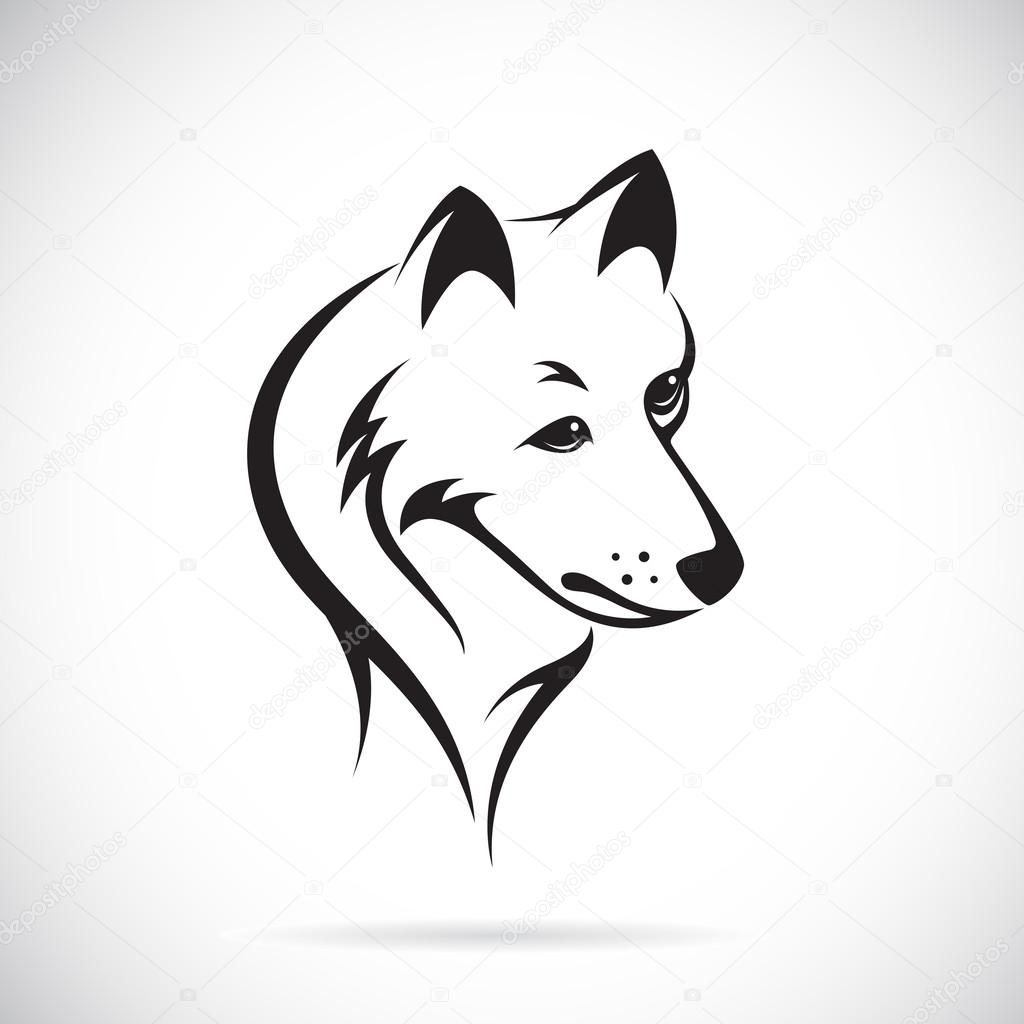 Vector images of wolf head