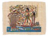 Fotografie Original ägyptischer papyrus
