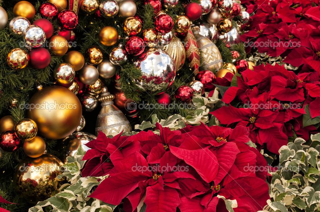 Weihnachtsstern Für Tannenbaum.Tannenbaum Und Weihnachtsstern Stockfoto Spacechimp 36889867
