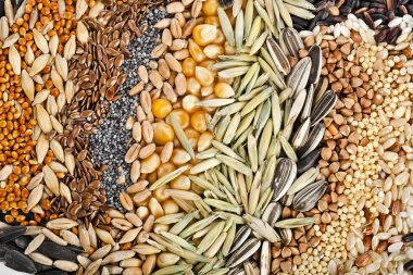 Cereal Grains and Seeds