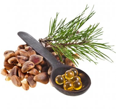 Cedar pine nuts and essential oil ball in spoon