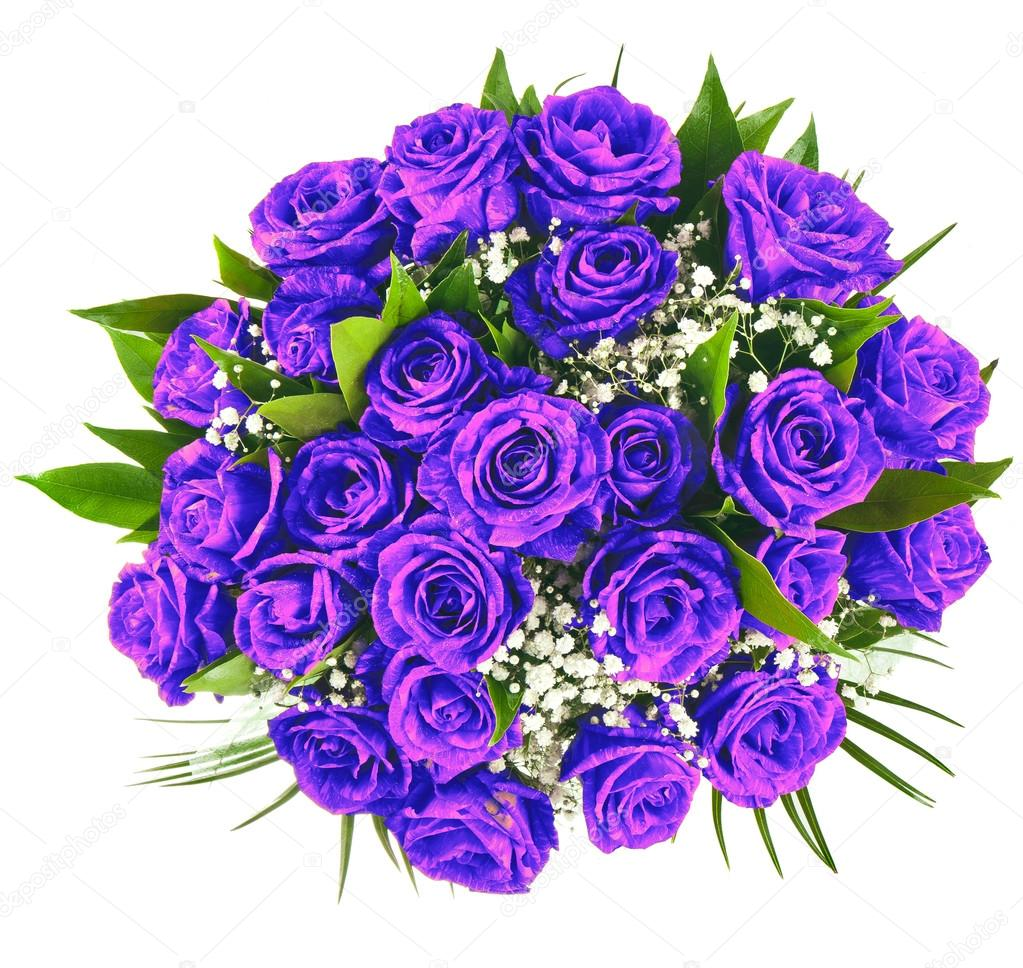 Beautiful Purple Rose Bouquet Surface Close Up Isolated On White Background Photo By Madllen