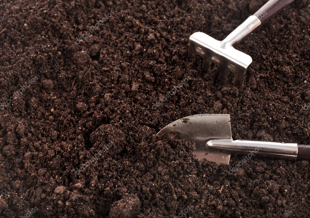 Close up of organic soil surface background with gardening tool