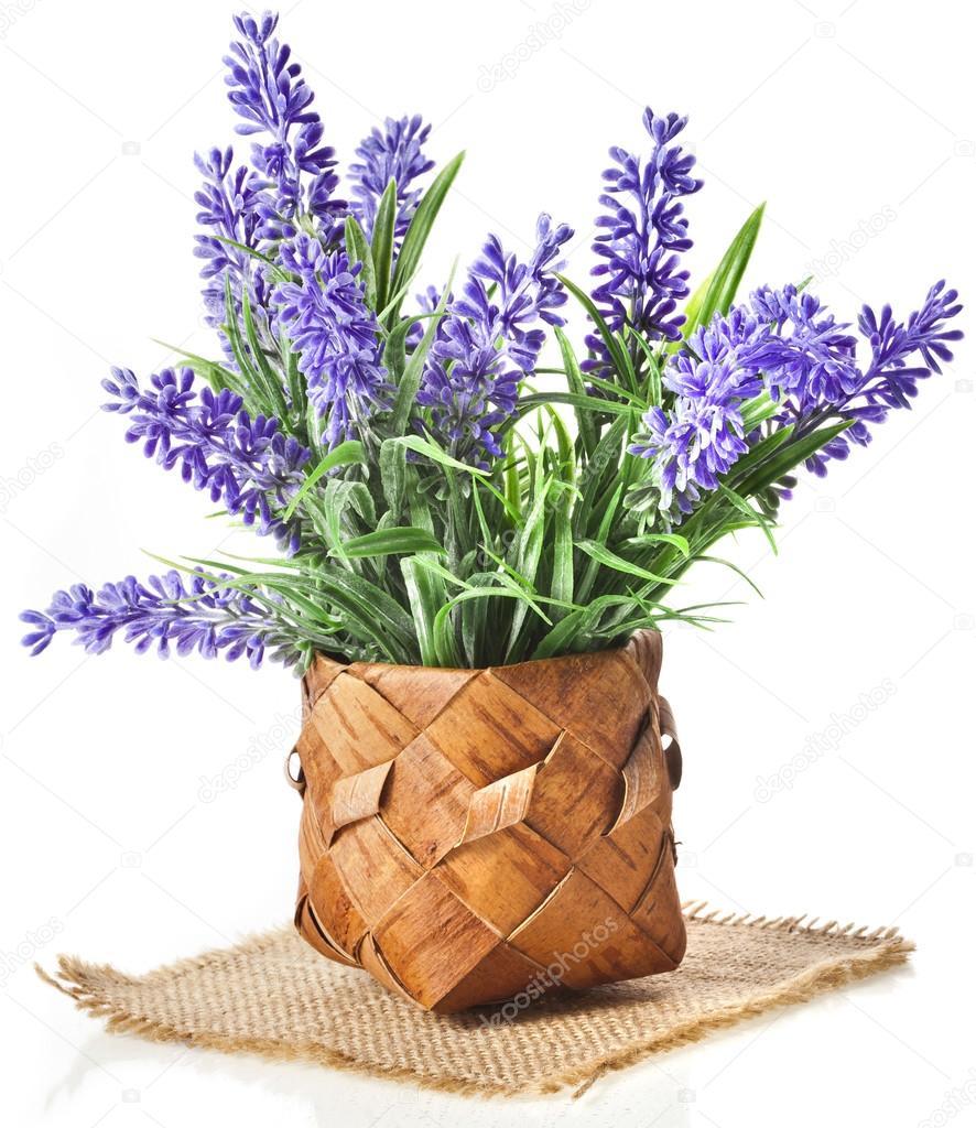 Cesto con bouquet di fiori di lavanda isolato su sfondo for Fiori di lavanda