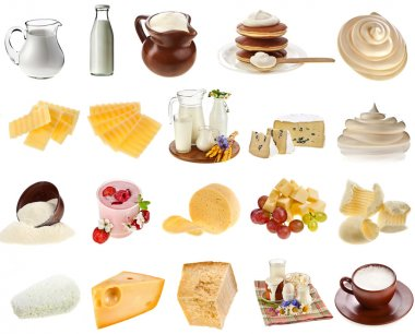 Collection set of dairy milk produce, cheese,curd, cottage close up