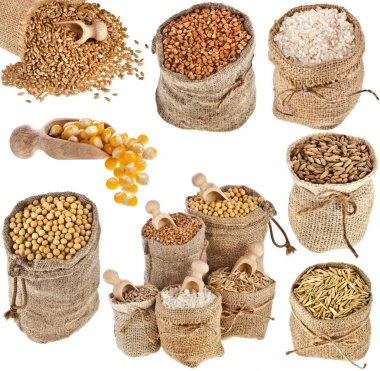 Collection set of kinds of cereal in small burlap bags isolated on white background