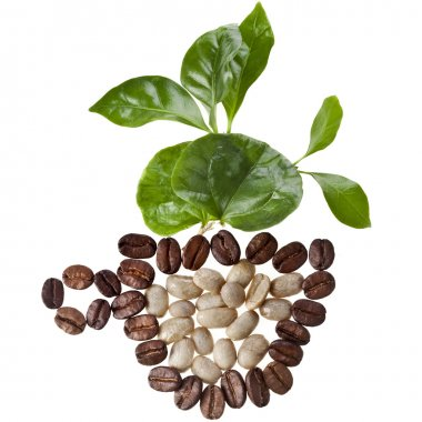 Coffee cup made of coffee beans and fresh leaves of coffee tree surface top view sign close up isolated on white