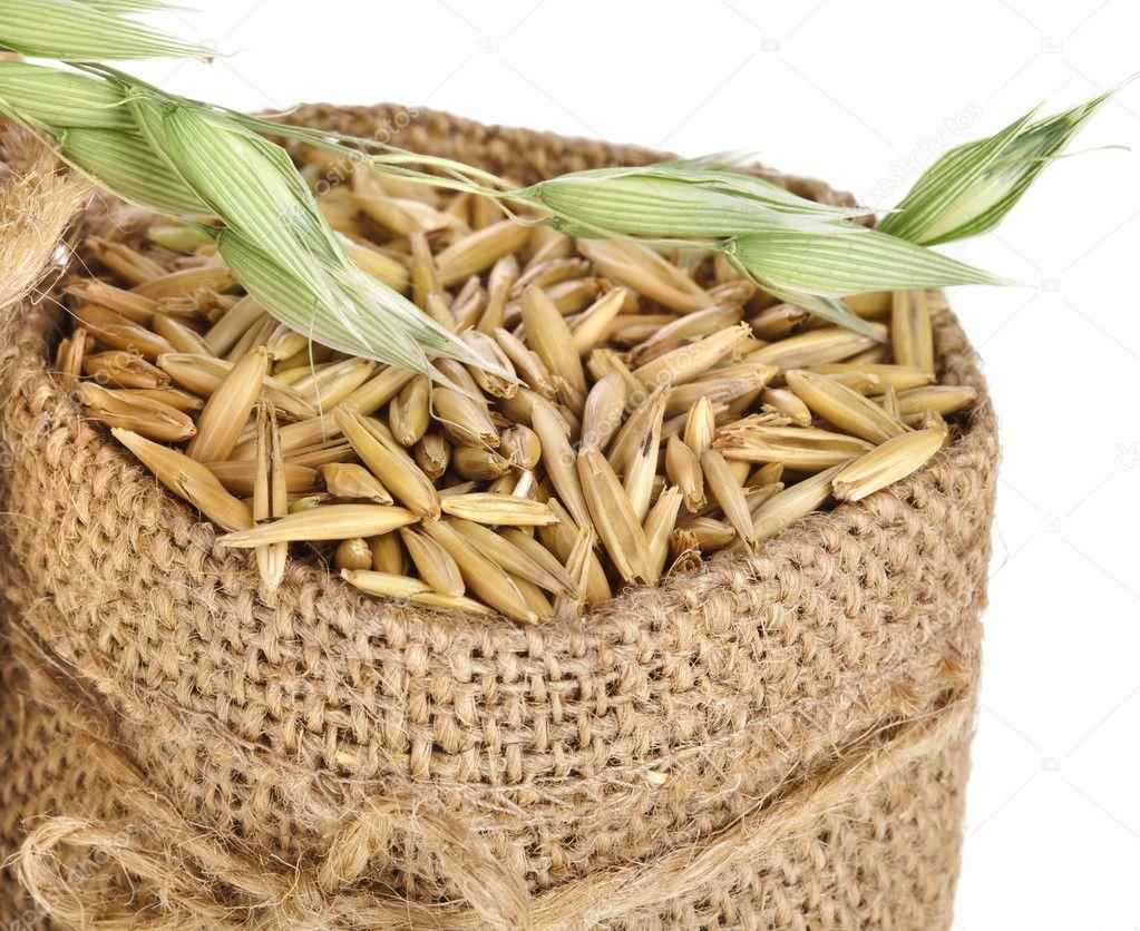 grano de avena en bolsa de saco de arpillera u fotos de stock