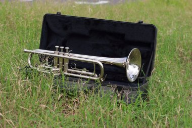 Trumpet on the green grass.