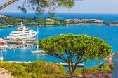 Fotografia porto cervo, Sardegna