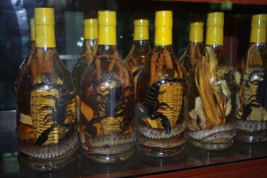 Bottles with snakes and scorpions in street shop