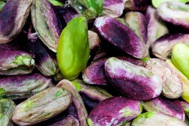 Seeds of pistachio