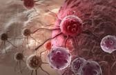 Fotografie nádorová buňka