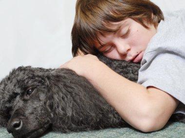 twelve year old boy asleep on standard poodle dog