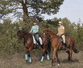Fotografie zwei lächelnde Mädchen Pferdereiten auf einem Trail im Wald