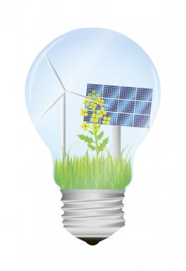 bio light bulb