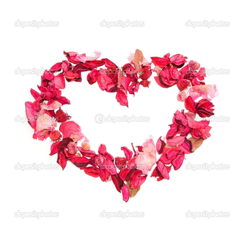 Imágenes Corazones Hechos Con Flores Corazón Hecho De Pétalos De