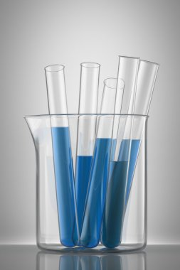 Chemical flask with a blue laboratory test tubes inside, isolate