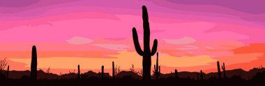 Mexican desert sunset with cactus.