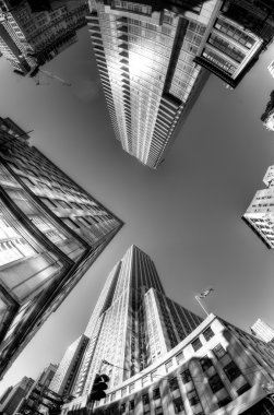 Looking up, Times Square, New York City, USA, black and white