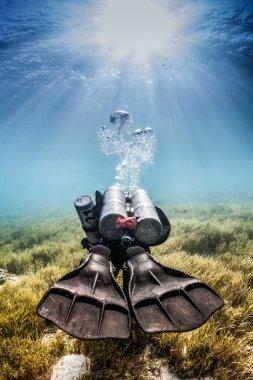 Diver swimming away